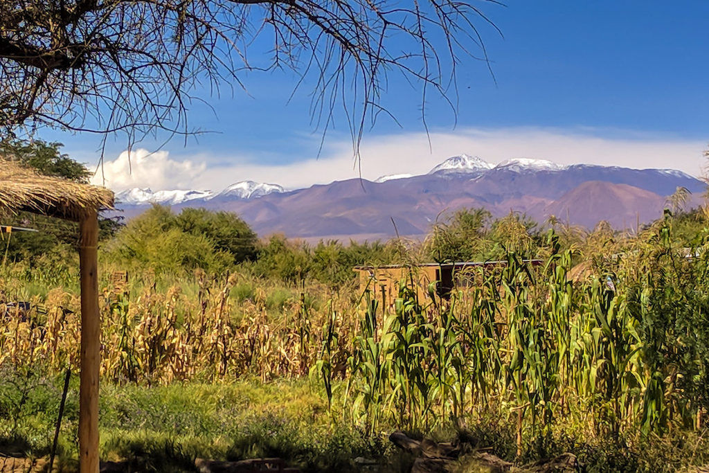 View of farmland and a shelter with the Andes Mountains in the distance